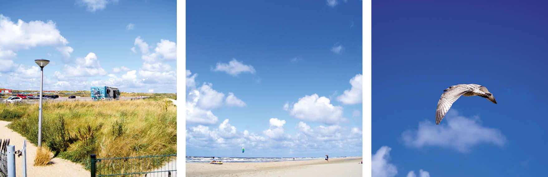 Zandvoort aan Zee – Anna Born, Serien-Nr.: 361-012