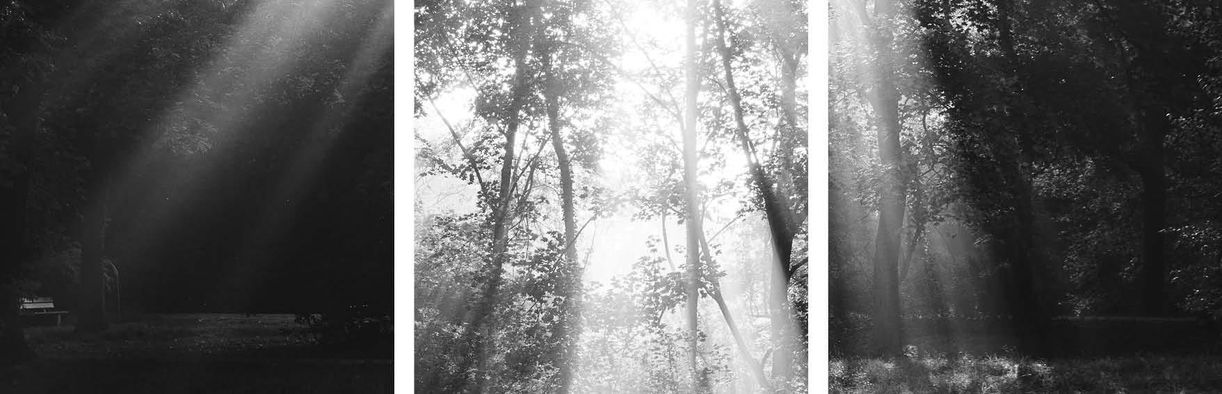 Licht – Roman Pretot, Serien-Nr.: 361-017